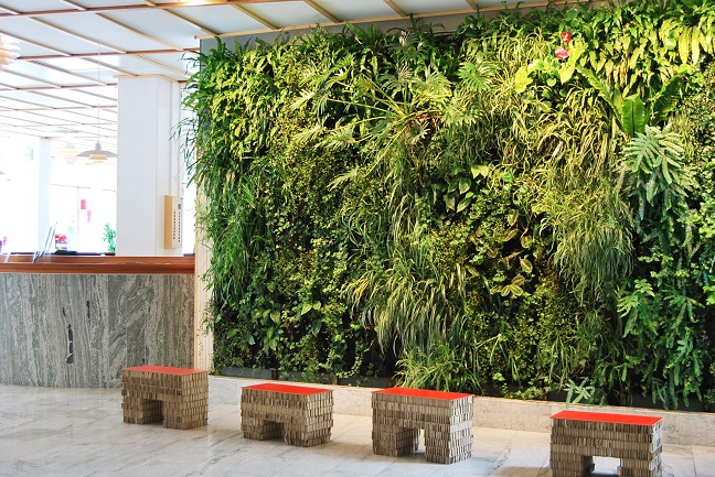5 Reasons For Installing A Living Wall