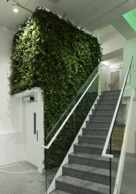 Aztec supply green walls