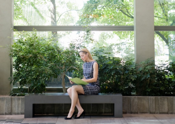 Mental Health In The Workplace – How Can Plants Help?