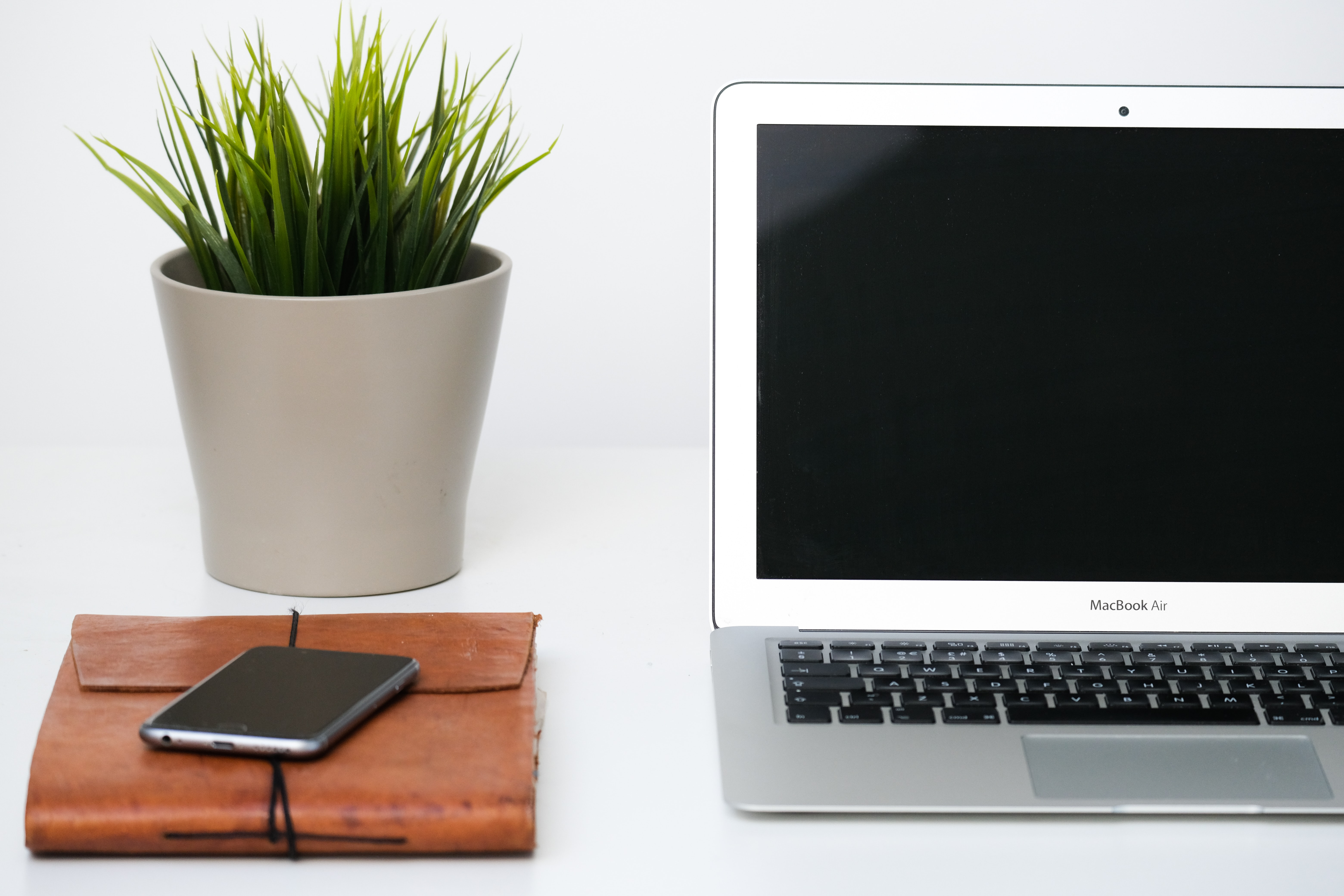 The Benefits of Indoor Plants When Working From Home
